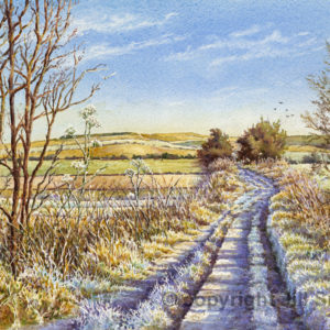 Frost on the Ridgeway