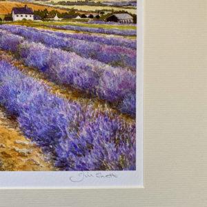 Lavender Time (Giclée Print)